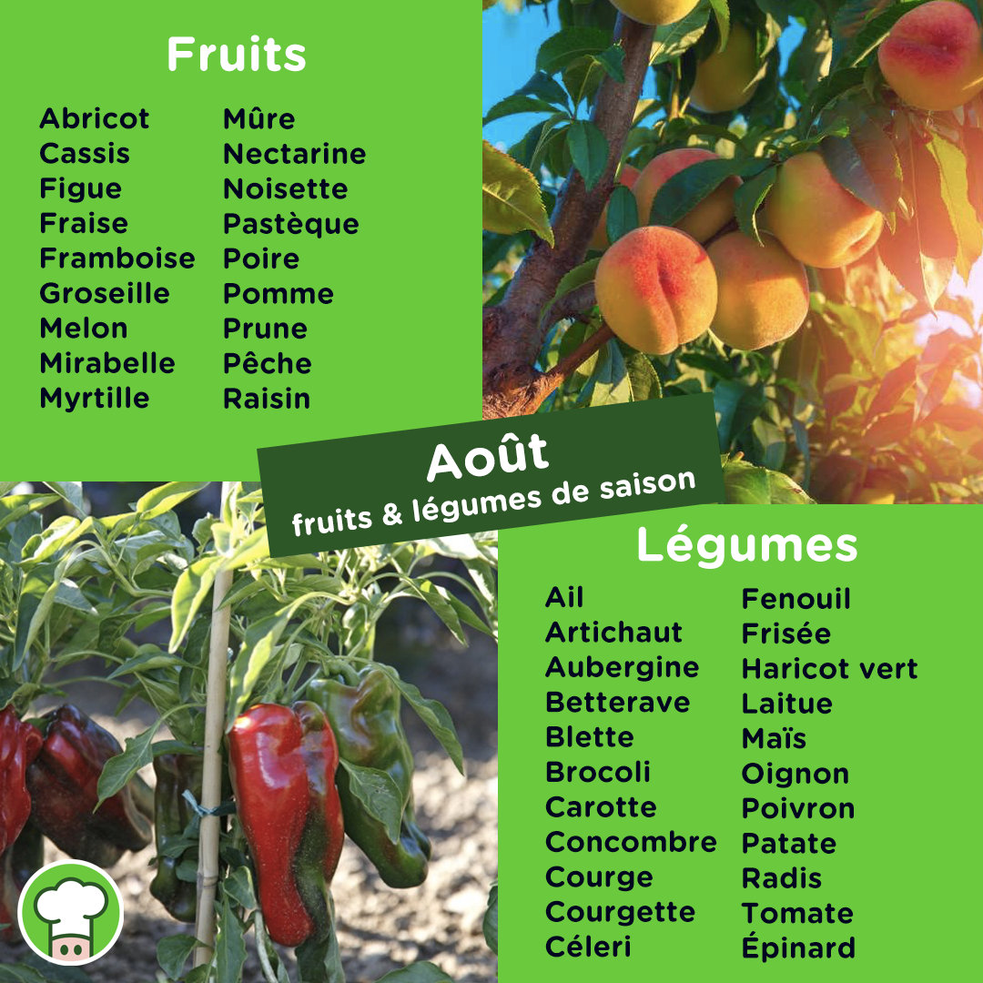 calendrier-fruit-legume-saison-aout